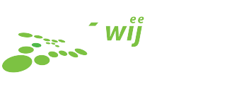 Logo, Website
